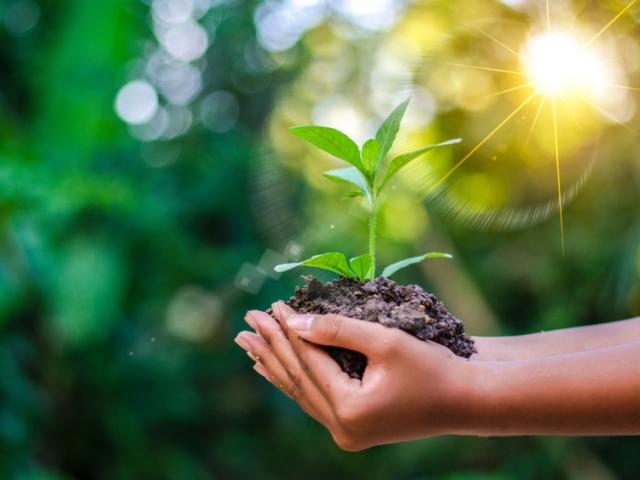 Nya sätt att spara på miljön 2019